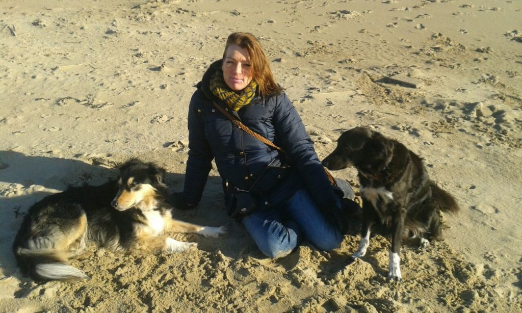 honden vermaak uitlaatservice castricum heiloo egmond